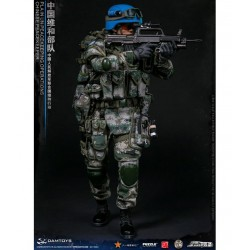 1/6 Chinese PLA in UN...